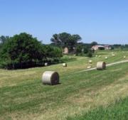 distretti rurali